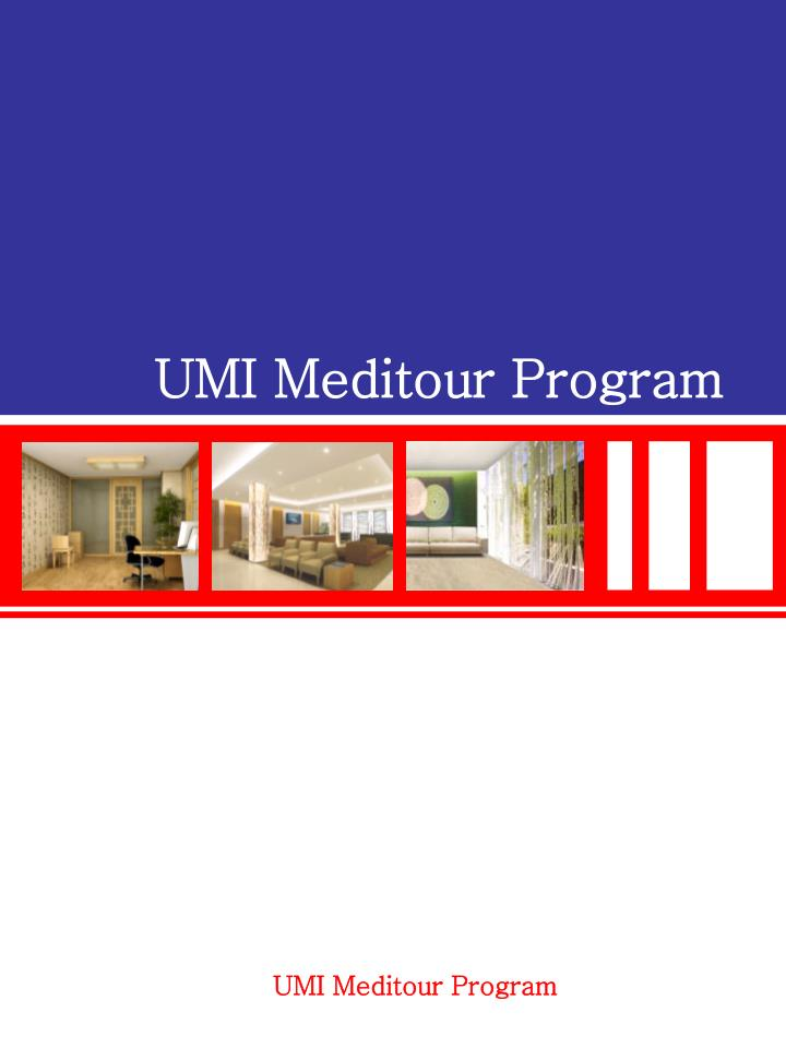 UMI Meditour Program