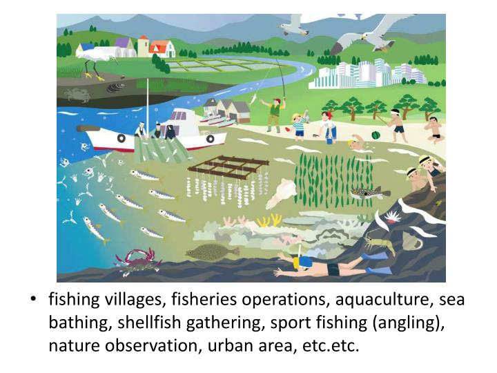 fishing villages, fisheries operations, aquaculture, sea bathing, shellfish gathering, sport fishing (angling), nature observation, urban area, etc.etc.