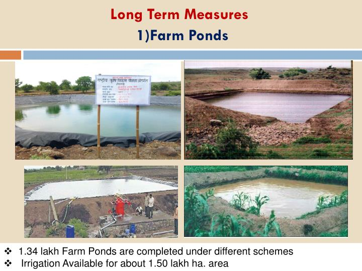 Long Term Measures