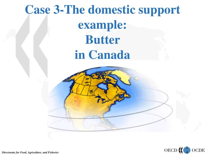Case 3-The domestic support example: