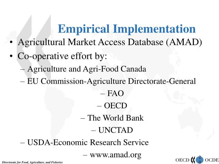 Empirical Implementation