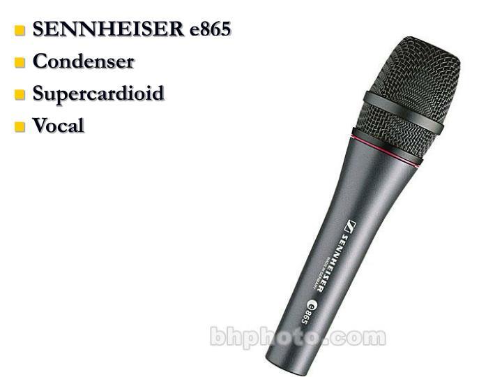 SENNHEISER e865
