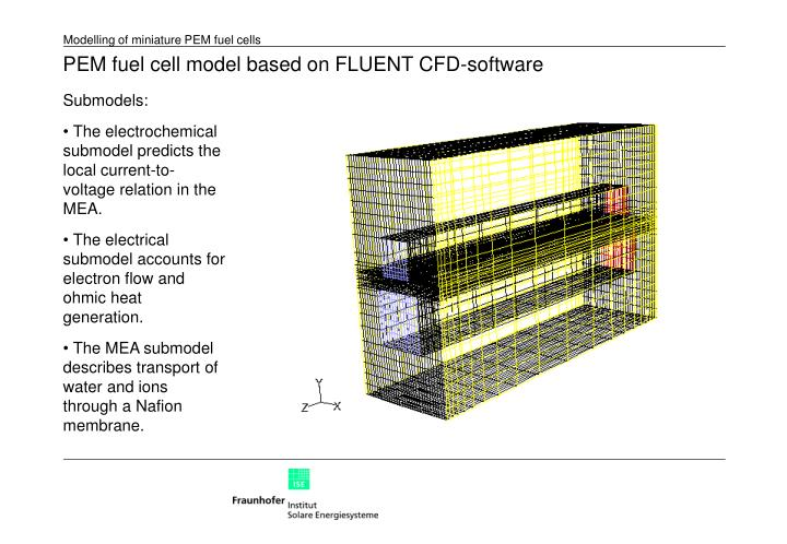 PEM fuel cell model based on FLUENT CFD-software