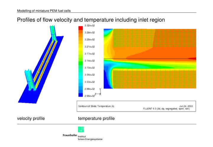 Profiles of flow velocity and temperature including inlet region
