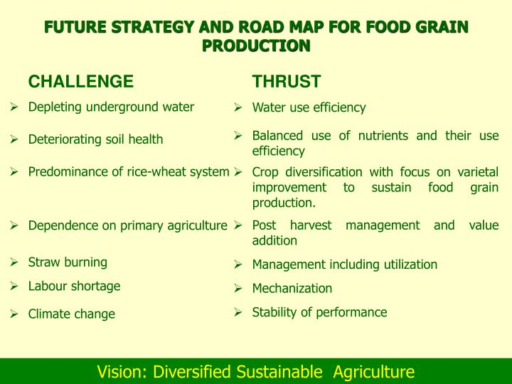FUTURE STRATEGY AND ROAD MAP FOR FOOD GRAIN PRODUCTION