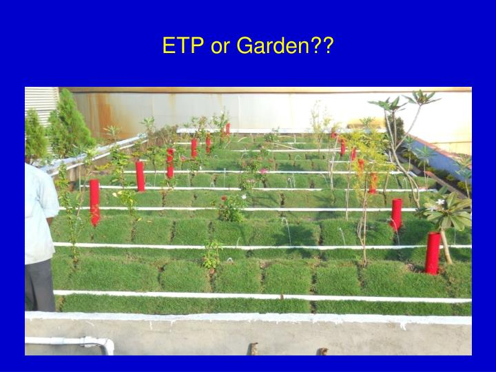 ETP or Garden??
