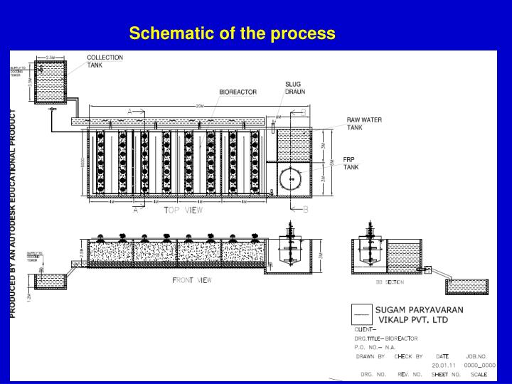 Schematic of the process
