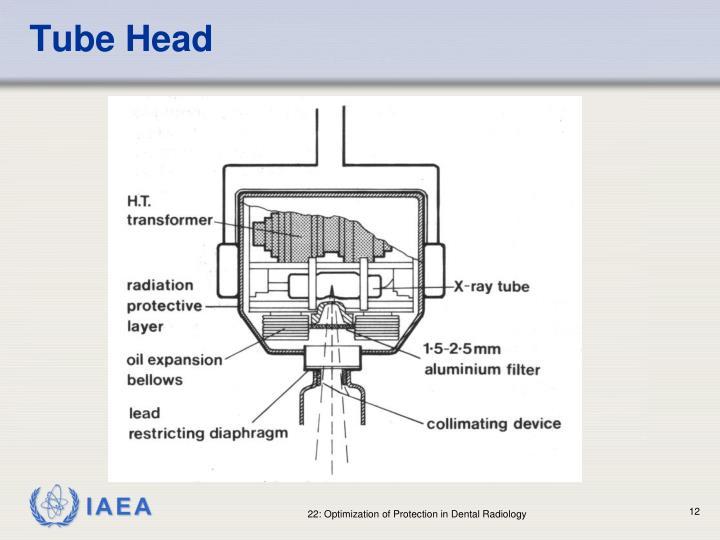 Tube Head
