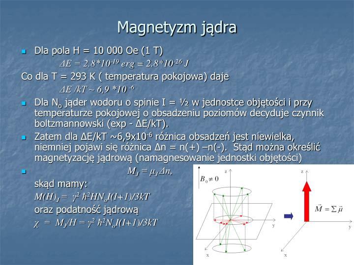 Magnetyzm jądra