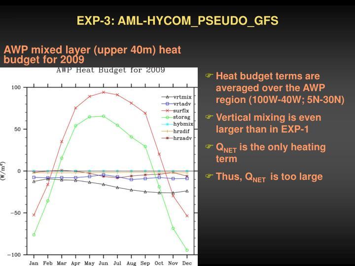 EXP-3: AML-HYCOM_PSEUDO_GFS
