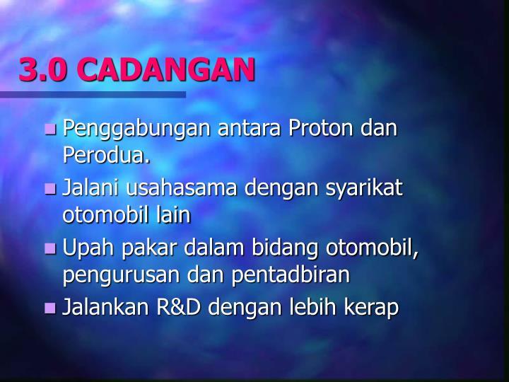 3.0 CADANGAN