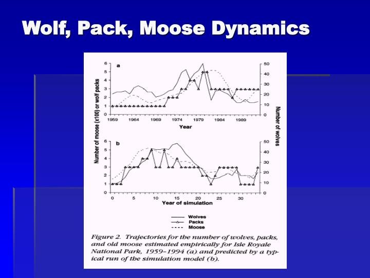 Wolf, Pack, Moose Dynamics