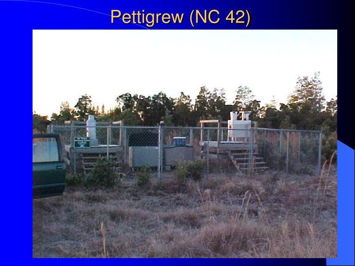 Pettigrew (NC 42)