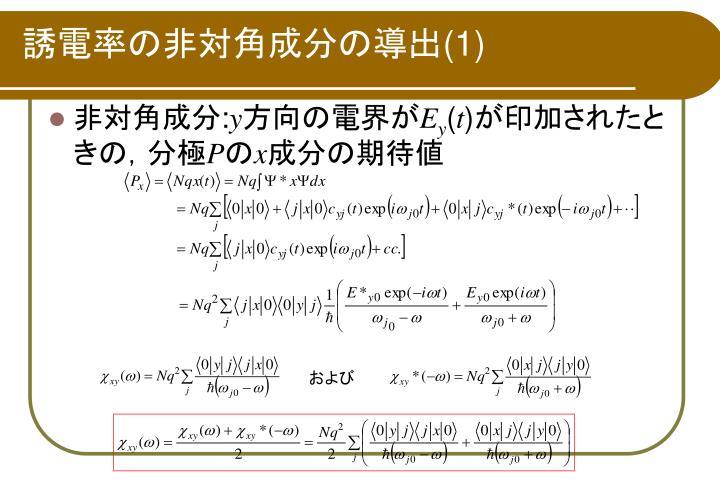 誘電率の非対角成分の導出