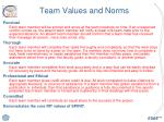 team values and norms