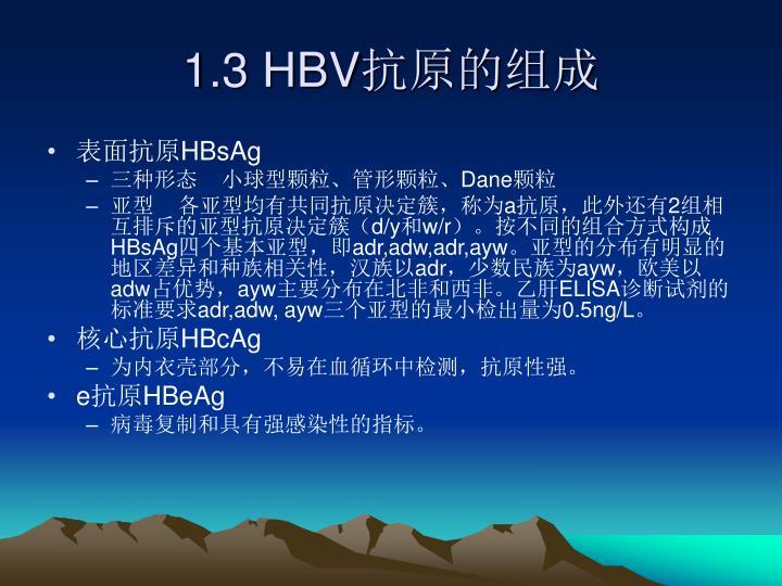 1.3 HBV