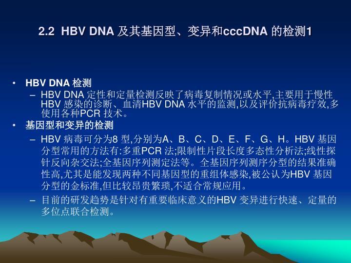 2.2  HBV DNA