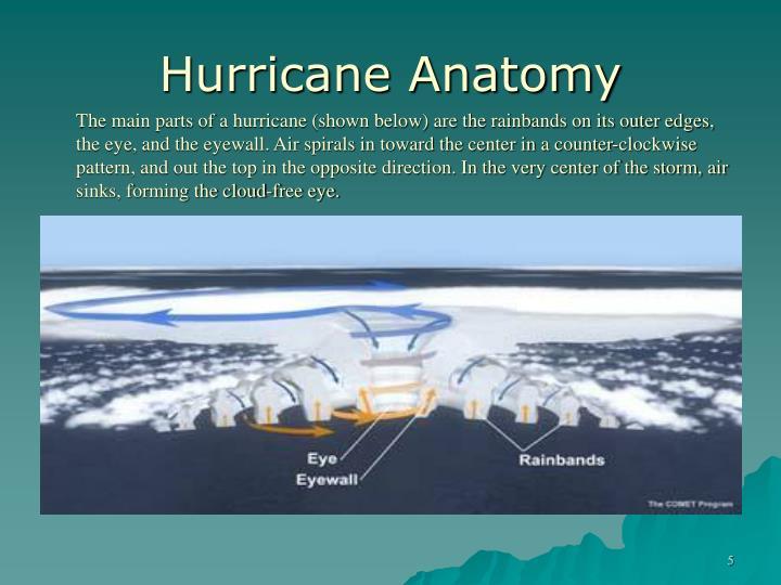 Hurricane Anatomy