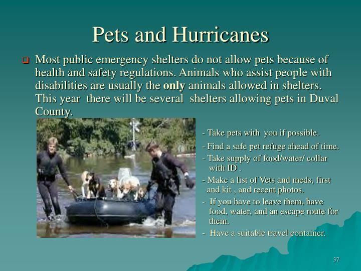 Pets and Hurricanes