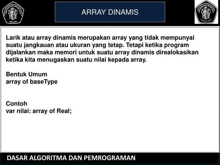 ARRAY DINAMIS