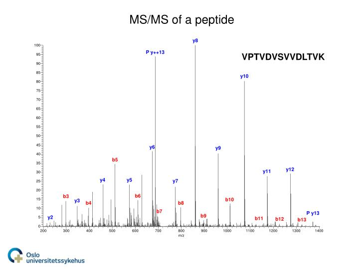 MS/MS of a peptide