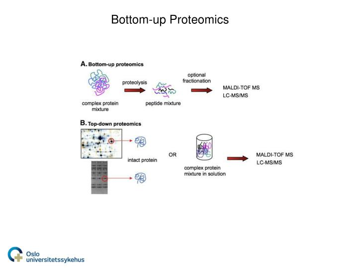 Bottom-up Proteomics