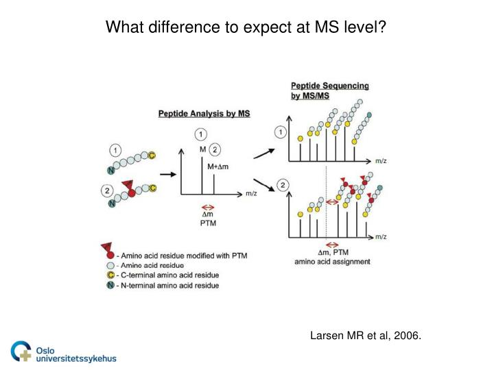 What difference to expect at MS level?
