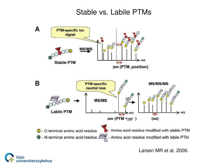 Stable vs. Labile PTMs