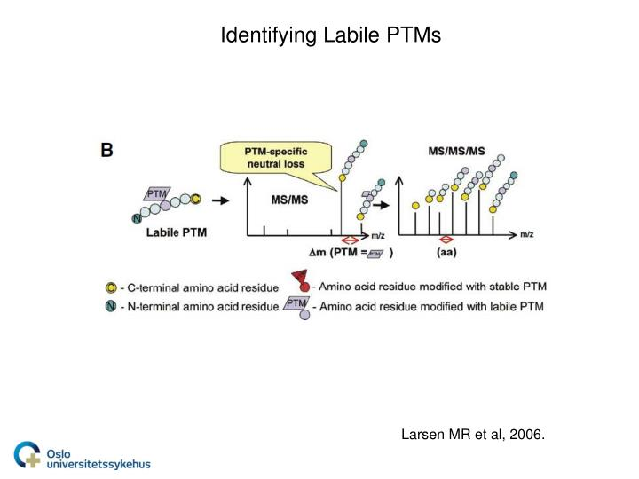 Identifying Labile PTMs