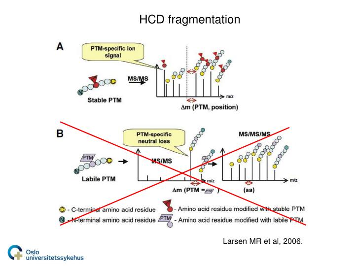 HCD fragmentation