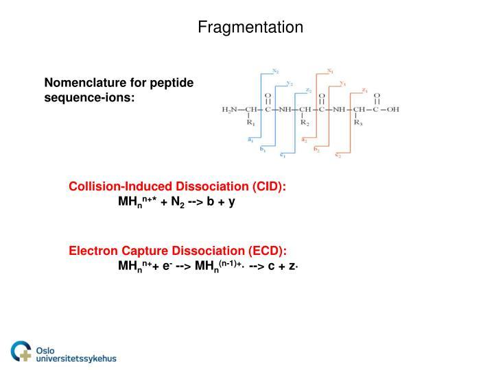 Fragmentation