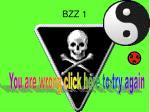 bzz 1