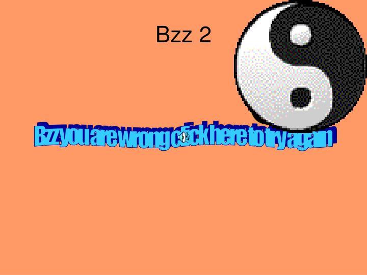 Bzz 2