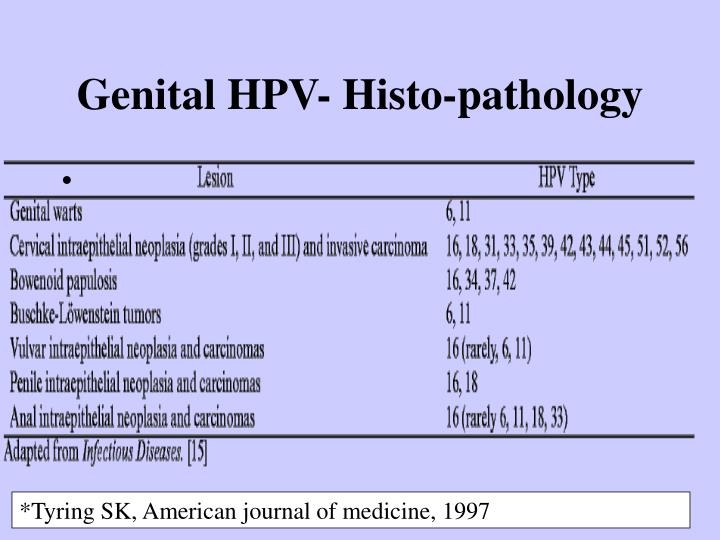 Genital HPV- Histo-pathology