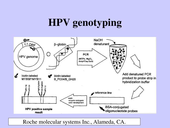 HPV genotyping
