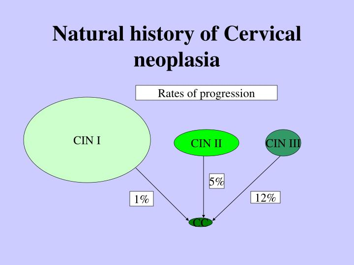 Natural history of Cervical neoplasia