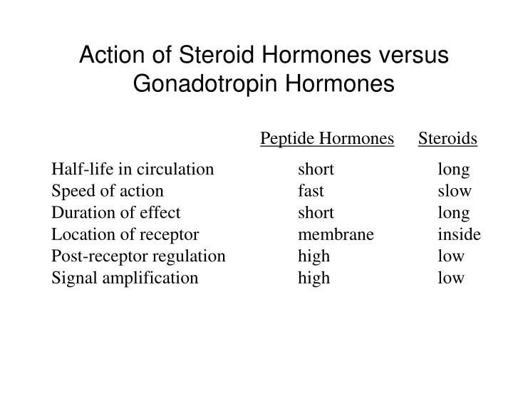 Action of Steroid Hormones versus