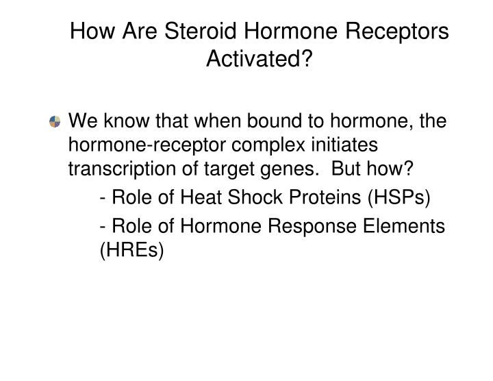 How Are Steroid Hormone Receptors Activated?