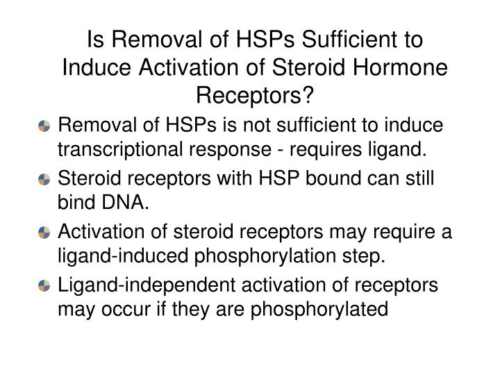 Is Removal of HSPs Sufficient to Induce Activation of Steroid Hormone Receptors?