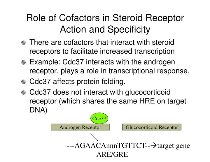 Role of Cofactors in Steroid Receptor