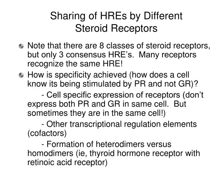 Sharing of HREs by Different Steroid Receptors