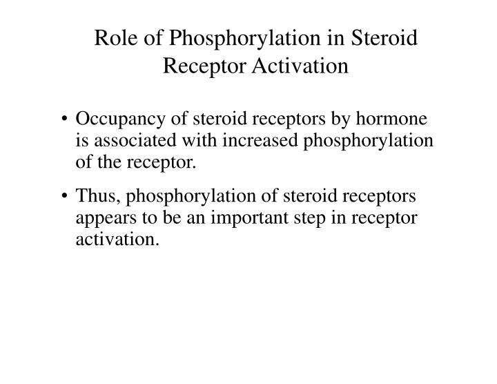 Role of Phosphorylation in Steroid Receptor Activation