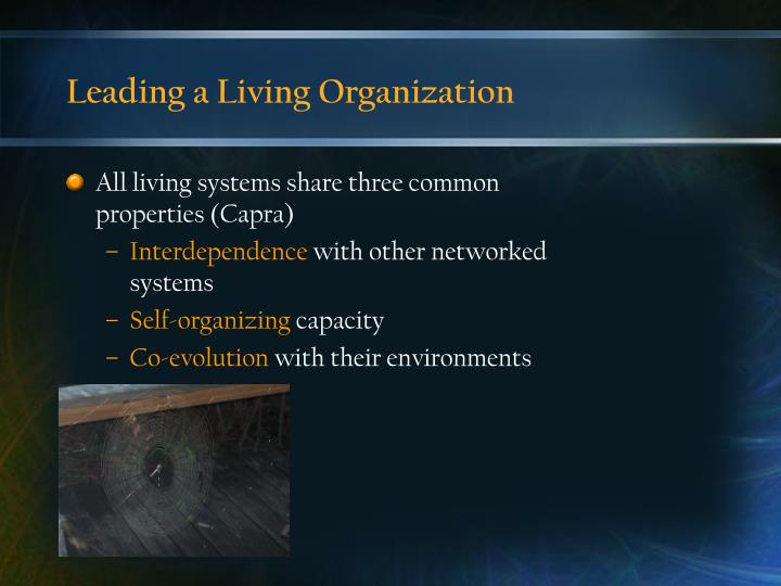 Leading a living organization