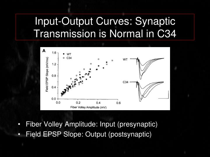 Input-Output Curves: Synaptic Transmission is Normal in C34