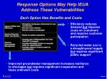 response options may help ieua address these vulnerabilities