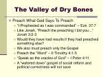 the valley of dry bones7