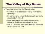 the valley of dry bones8