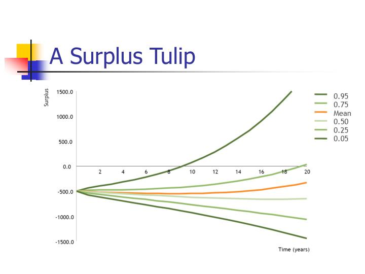 A Surplus Tulip