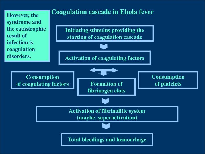 Coagulation cascade in Ebola fever