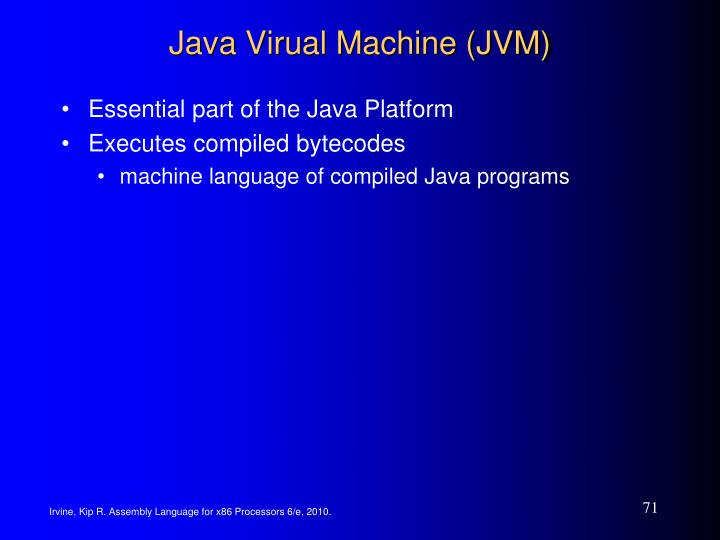 Java Virual Machine (JVM)